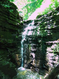 Waterfall in the Untamed Glen